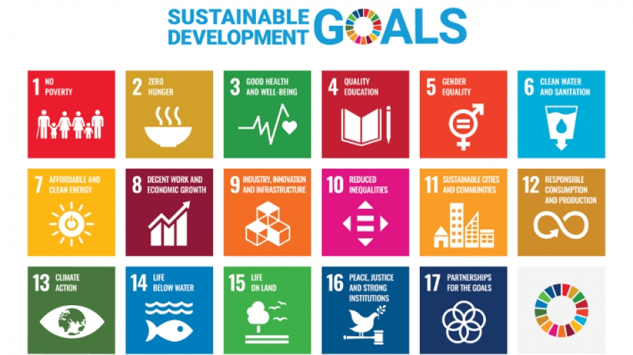 The importance of key skills for sustainable development